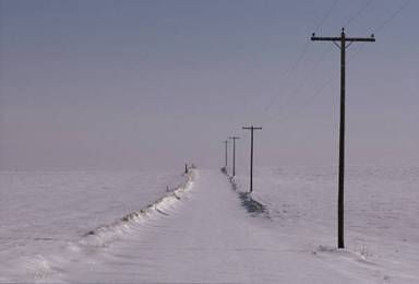 snowandtelegraphpoles.jpg