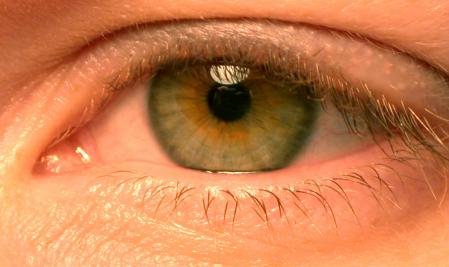 Close Ups: A Light Hearted Approach 7