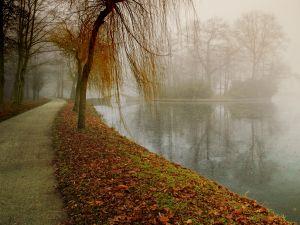 fog-and-lake.jpg