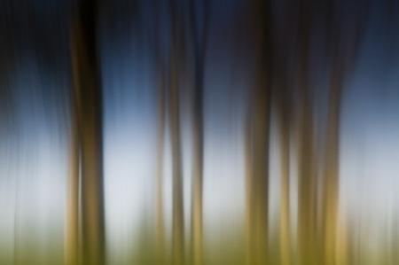 Vaseline effect#2 - Eva Polak